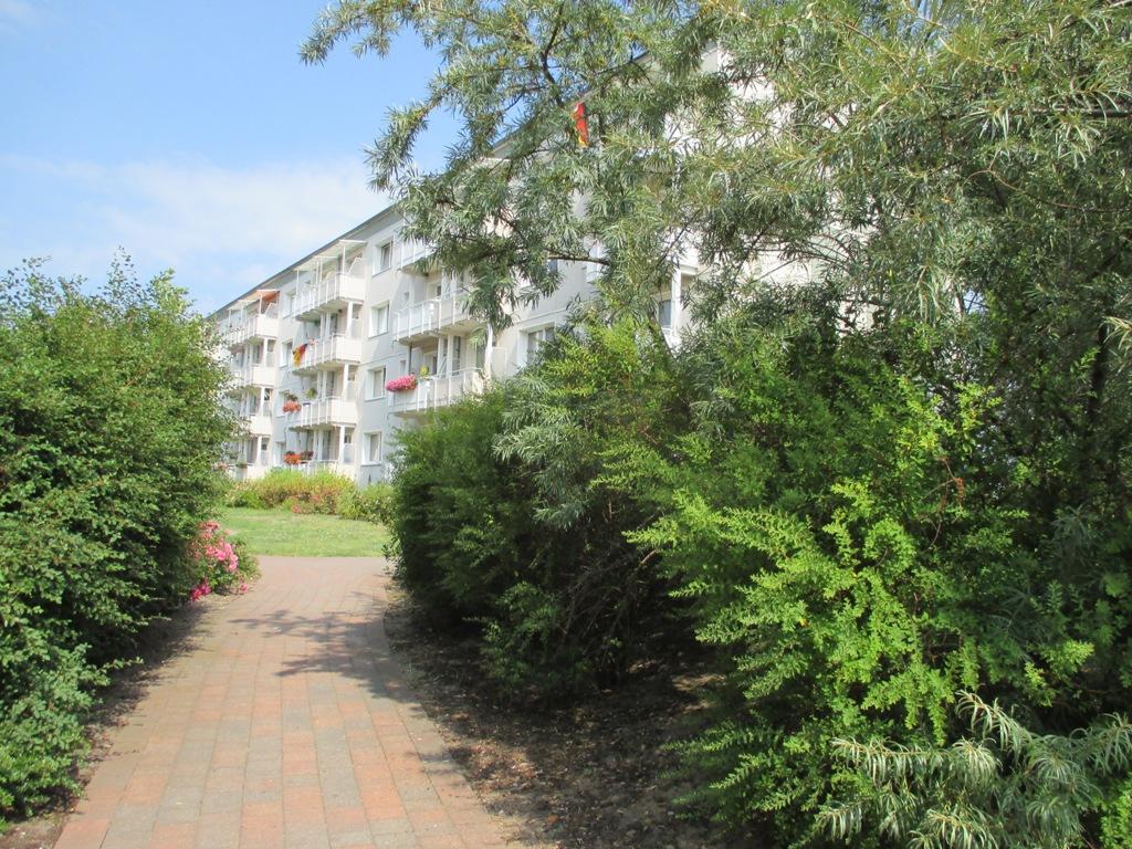 UWG - Wohnung Wohnen in der Gartenstadt – Ueckermünde Ost